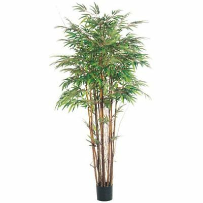 5' Natural Trunk Bamboo Silk Tree w/Pot -1,840 Leaves (pack of 2)