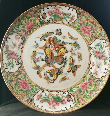 Teller China Um 1820 Schmetterlinge Grün Bunt