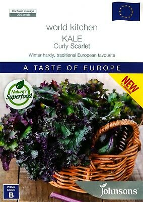 (Johnsons Seeds) KALE: Curly Scarlet (Brassica oleracea acephala) Approx. 360