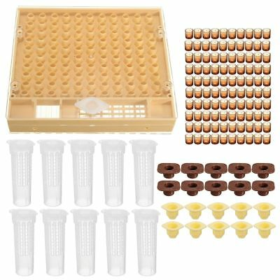 Queen Rearing Cupkit Plastic Box Brown Cell Cup Bar Holder Hair Roller Cages
