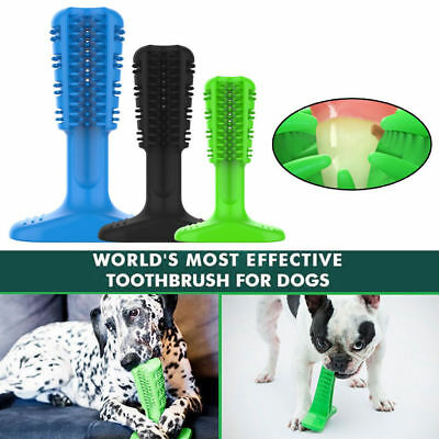 Bristly Brushing Stick World's Effective Toothbrush for Dogs Pets Oral Care