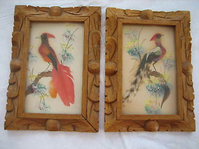 Pair Of Vintage Real Feather Art Bird w/ Hand Carved Wood Frame - Mexico