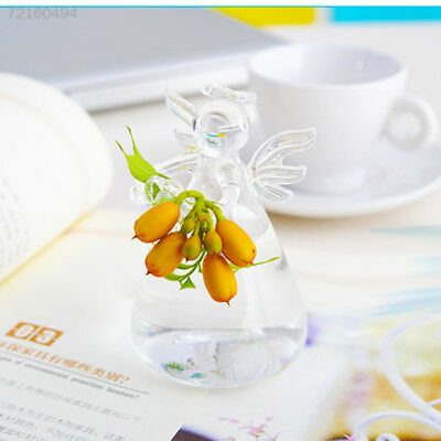 CC34 Transparent Glass Vase for Home Garden Decor Hydroponic Glass Vase Hanging