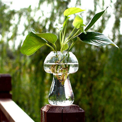 48AA Mushroom Shaped Glass Vase Glass Terrarium Container DIY Home Table Ornamen
