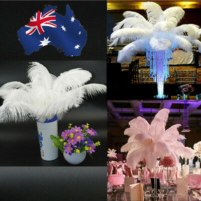 10 pcs Large Ostrich Feathers Costume Birthday Wedding Party 30-35cm Decoration