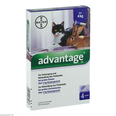 ADVANTAGE 80mg Spot On Flea Treatment & Prevention for Cats over 4kg (9lbs)