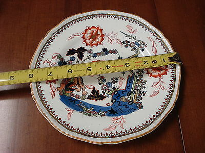 """Antique DINNER PLATE Y1844 Coalport TIGER 8"""" TC3 Made In England"""