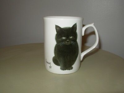 1996 FRANCIEN'S CATS Fine Bone China Mug by Duchess - Made in England