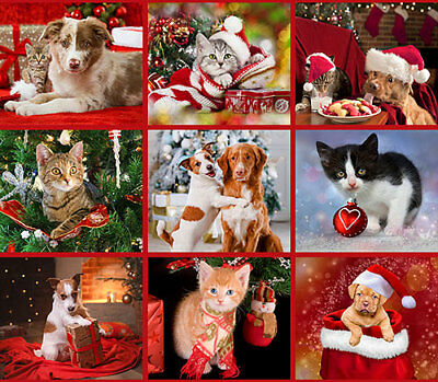 """FABRIC~CHRISTMAS PETS~ CATS & DOGS~FABRIC QUILT PANEL~WALL HANGING~~36""""  x 44"""""""