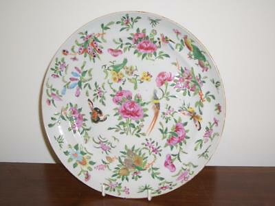 Chinese Famille Rose Porcelain 'birds, Butterflies, Flowers' 23.8Cm Plate,19Th C