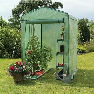 Gardman Walk-In 4 x 6 ft. Greenhouse with Shelving, 6.25