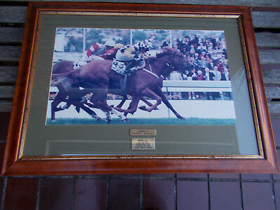 "FRAMED HORSE PRINT UNDER GLASS ""SAINTLY"" COX PLACE Oct 26th 1996 DARREN BEADMAN"