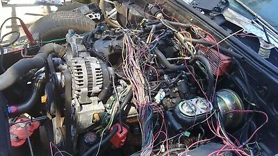 1997 2006 dbc ls1 standalone wiring harness with 4l60e transmission1997 2006 dbc ls1 standalone wiring harness with 4l60e transmission