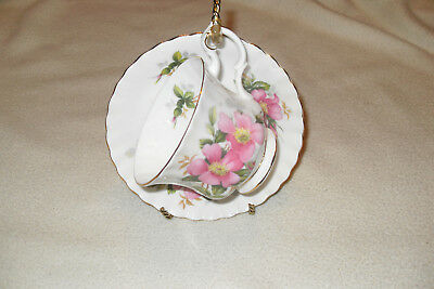 Royal Albert PRAIRIE ROSE  Cup and Saucer Free shipping in Canada