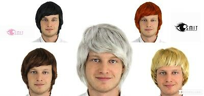 Mens Short Wig Boy Band Adult Male Accessory 60S 70S 80S 90S Fancy Dress Costume