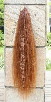 """Horse Tail Extention Single Thickness Hair Chestnut sorrel 28-30"""" 3/8Lb aC1H"""