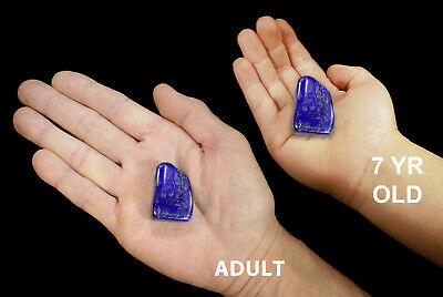 "Lapis Lazuli 3/4"" 2 Pieces AAA Grade Tumbled Polished Rock Mineral Specimen Gem"