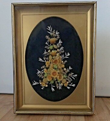 "Vintage Gold Framed Dried Pressed Flowers Sunflowers 8"" x 6"""