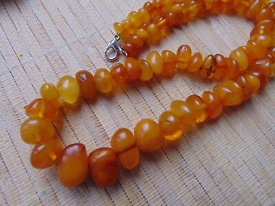 Natural honey egg yolk Butterscotch Baltic AMBER beads stones Necklace 24gr 46cm