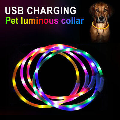 USB Rechargeable LED Luminous Dog Pet Safety Collar Night Light Glow GB6n