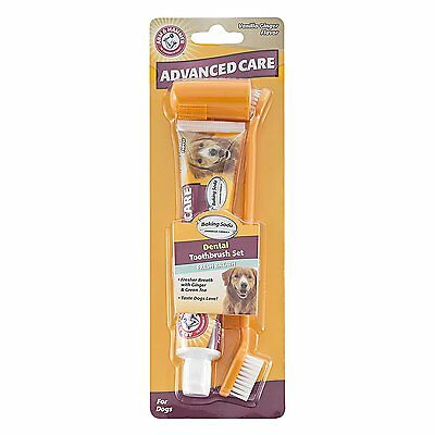 Arm & Hammer Pet Advanced Care Dental Toothpaste & Toothbrush Kit for Dogs