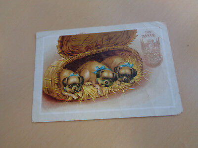 Antique Victorian Trade Card-The Davis Sewing Machines-Boxer Dog Puppies