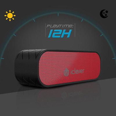 iClever Bluetooth Speaker 2×10W Wireless Speaker with Mic Enhanced Bass 12 Hours