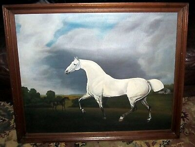 "Beautiful Vintage Painting White Horse Show Horse Oil Painting 33"" x 27"""