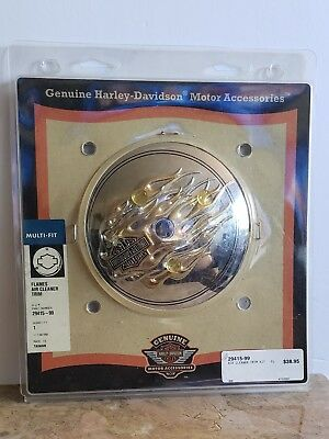 Harley Davidson Oem Flames Gold And Chrome Air Cleaner Trim