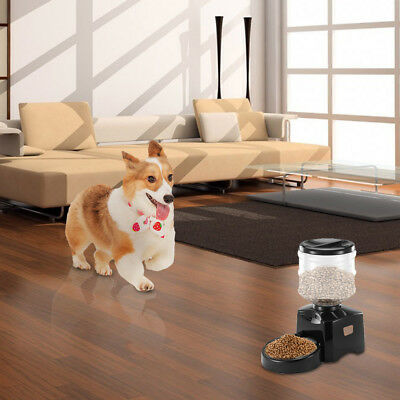 NEW* LCD Screen 5.5L Automatic Pet Plan Feeder with Voice Message Recording