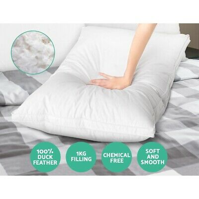 Duck Feather Down Twin Pack Pillow White w Cotton Shell 75x50cm