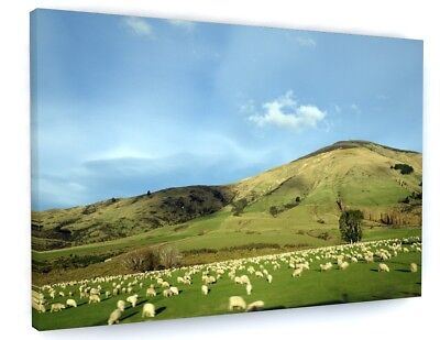 COUNTRYSIDE LANDSCAPE ANIMALS SHEEP CANVAS PICTURE PRINT WALL ART 6110