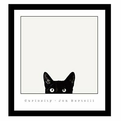 BuyArtForLess Curiosity Black Cat Framed Wall Art by Jon Bertelli