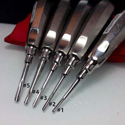 Dental Stainless Extraction Apical Root Elevators Straight Surgical Tool 5 Sizes