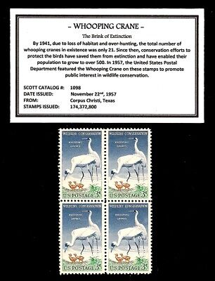 1957 - WHOOPING CRANE -  Block of Four Vintage U.S. Postage Stamps