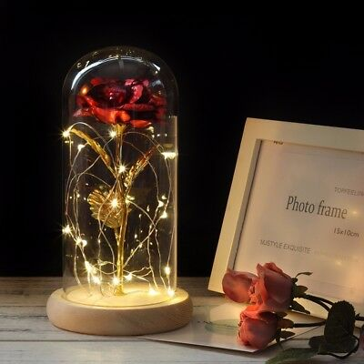 Forever Rose Beauty And The Beast 24k Gold Plated Led Light glass dome Gift love
