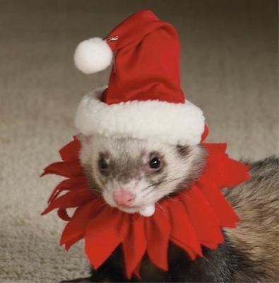 Marshall Pet Ferret Christmas Theme Holiday Santa Suit Collar. Free Ship To Usa