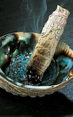 White Sage Smudging Kit Abalone Shell Incense Kit Witch Occult Cleansing Ritual