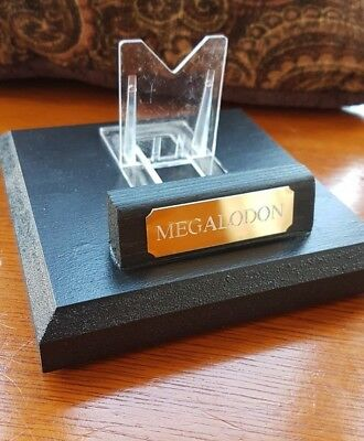 Megalodon Fossil Shark Tooth Stand 12cm square - individually hand made