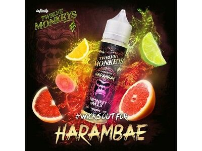 Twelve Monkeys Liquid Shake and Vape - Harambae 0 mg/ml 50ml DIY