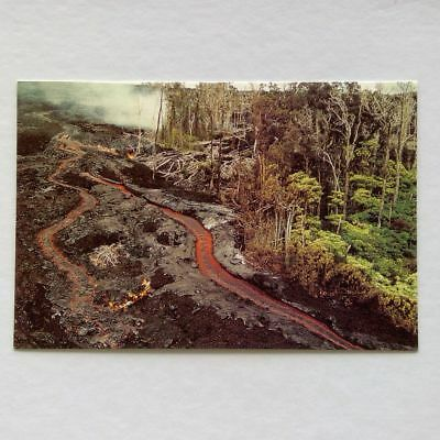 Hawaii Rivers of lava Postcard (P345)