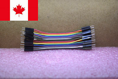 Dupont Jumper Wire Cable Male - Male 10cm 20pcs for Arduino Breadboard Canada