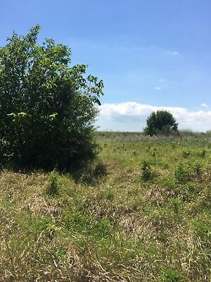BULGARIAN LAND  x 2 600SQ MT PLOTS? PERMISSION FOR A VILLA  500 MT FROM THE SEA