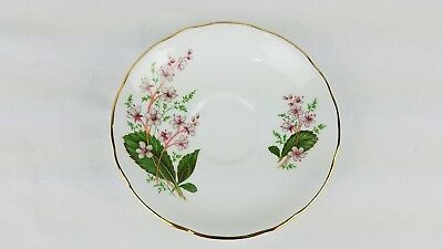 Royal Stafford London Pride One Saucer Fine Bone China England