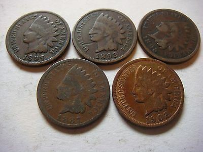 Lot of 5 nice old  Indian Head U.S cent Coins  #9615