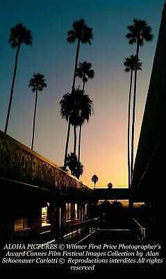"""Aloha Pictures By Alan Schoenauer Photographie D'art """" Century Blv Los Angeles """""""