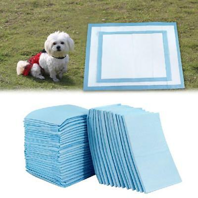10pcs Pet Dog Pee Toilet Training Pads Cat Puppy Kitten Super Absorbent Diapers