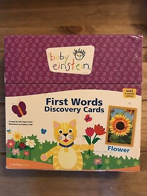 Baby Einstein First Words Learning Discovery Cards