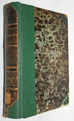 Andersson: Lake Ngami; or, Explorations and Discoveries...  1856 Printing, HC