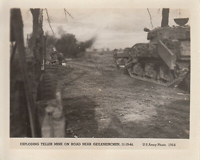 Original WWII US Army Photo CRAB SHERMAN TANK MINE FLAYER 1944 Geilenkirchen 212